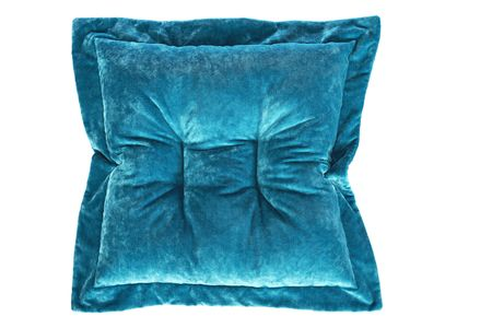 BRETZ Bretz Cushion D112R (ZIP)